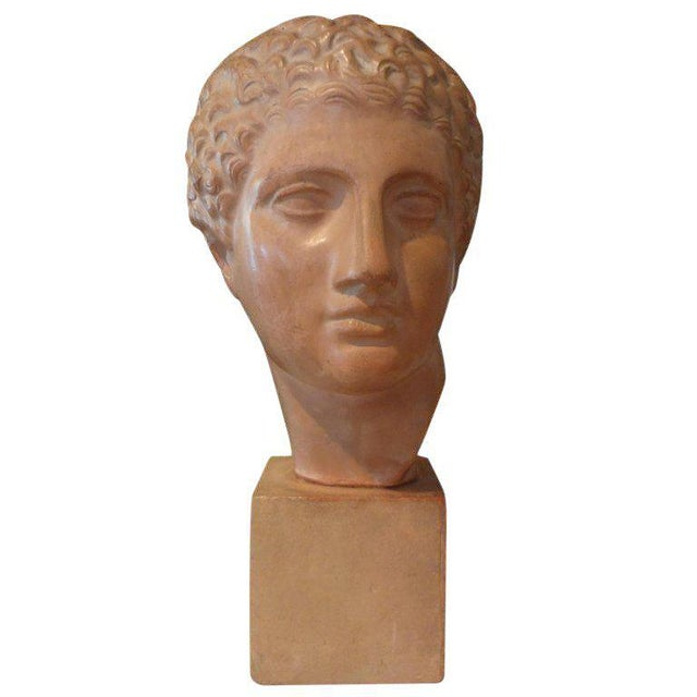 Ceramic 1920s Vintage French Classical Male Terra Cotta Bust Sculpture For Sale - Image 7 of 8
