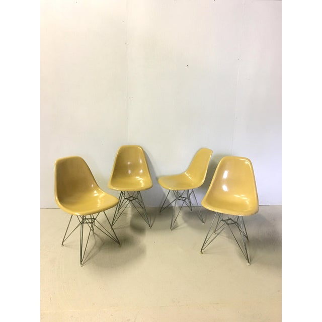 Great set of four mustard yellow, fiberglass Eames shell chairs for Herman Miller. One owner. Herman Miller label...