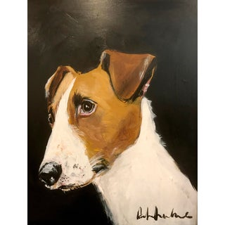 Parsons Jack Russell For Sale
