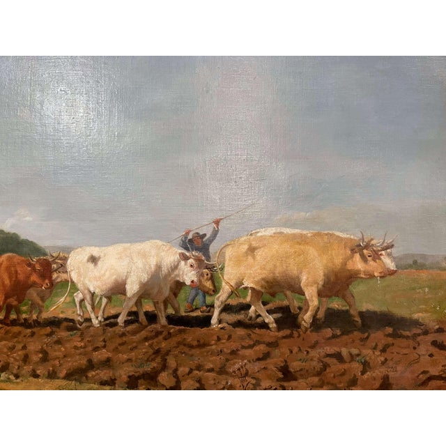"""Mid-19th Century French Oil on Canvas Cows Painting """"Plowing in Nivernais"""" For Sale In Dallas - Image 6 of 13"""