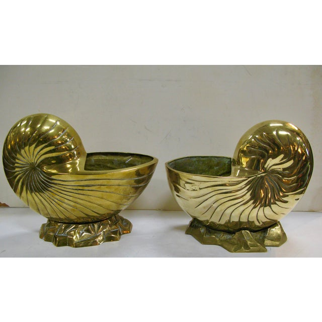 Vintage Huge Brass Nautilus Seashell Planters - a Pair For Sale - Image 13 of 14