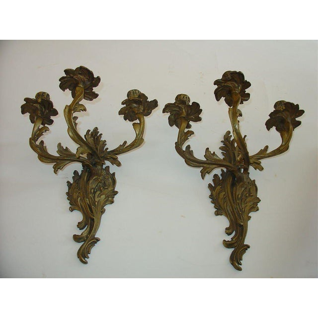 Bronze Louis XV style three-arm pair of sconces with scrolling Acanthus leafs.