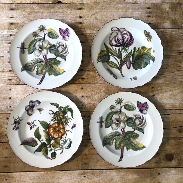 Mottahedeh Chelsea Botanical Vista Alegre Dinner Plates - Set of 4 For Sale - Image 12 of 12