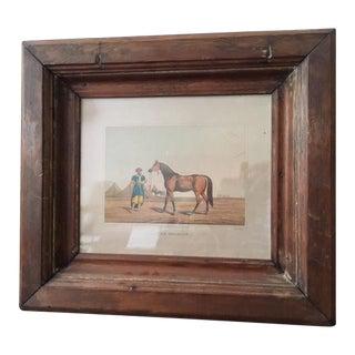 "Early 19th Century Antique Henry Alken ""The Arabian Horse"" Framed Print For Sale"