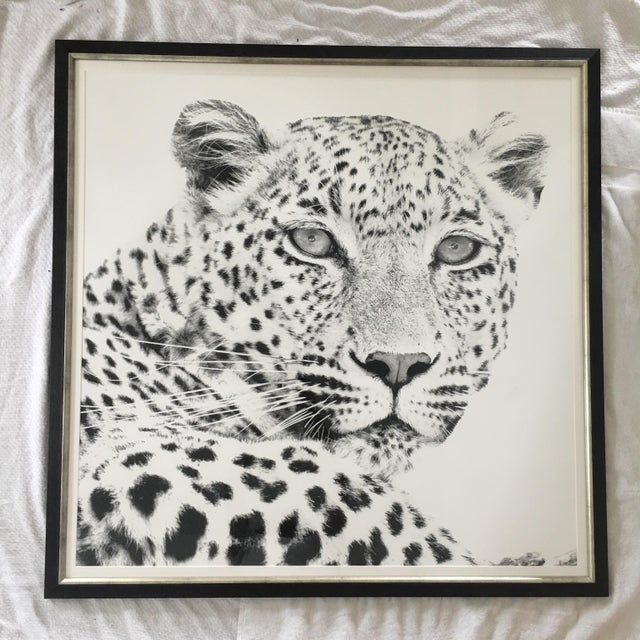 Asian Black and White Cheetah Photograph For Sale - Image 3 of 3