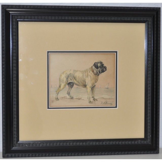 Absolutely beautiful antique Bullmastiff Watercolor by R.F. Weir, circa 1895. The dog is shown on the shore with sailboats...