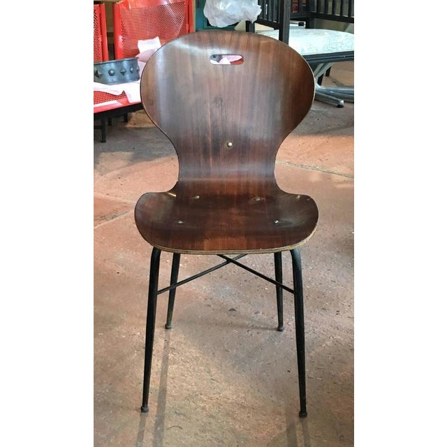 Rare and large grouping of early Carlo Ratti molded plywood chairs ; seat height, tapered iron leg and interesting strap...