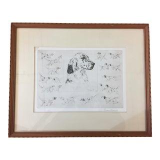 """English Setter"" Framed Illustration by Diana Thorne For Sale"