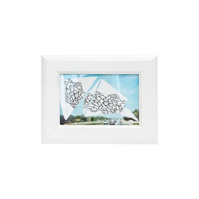 Framed Original Leaf Drawing & Photograph Collage - Image 5 of 5