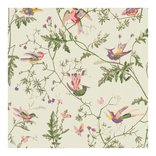 Sample - Cole & Son Hummingbirds Botanic Style Wallpaper For Sale