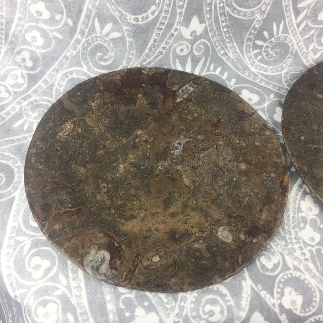 Orthoceras Red Brown Fossil Stone Plates- a Pair For Sale - Image 6 of 12