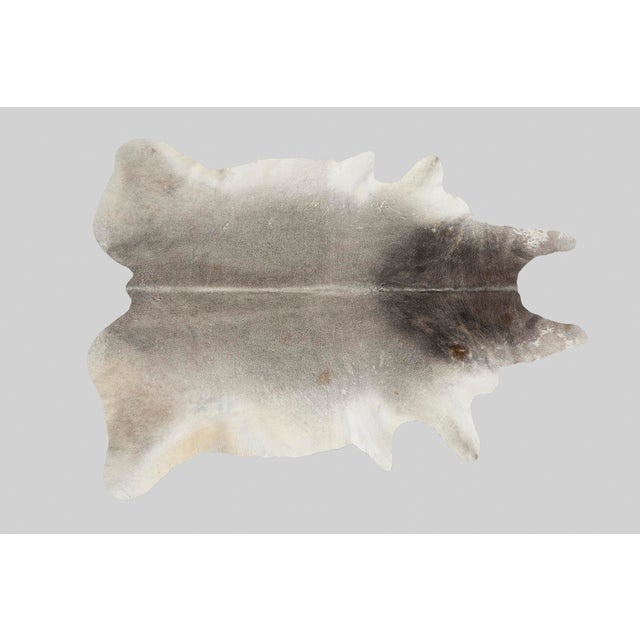 Contemporary Grey Genuine Brazilian Cowhide For Sale - Image 3 of 3