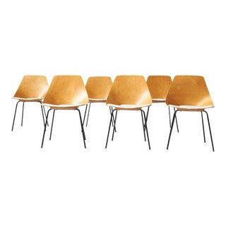 "'Tonneau"" Chairs by Pierre Guariche - Set of 6 For Sale"