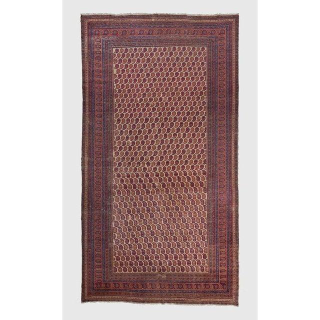 White Ground Allover Design Khorasan Carpet For Sale - Image 4 of 4