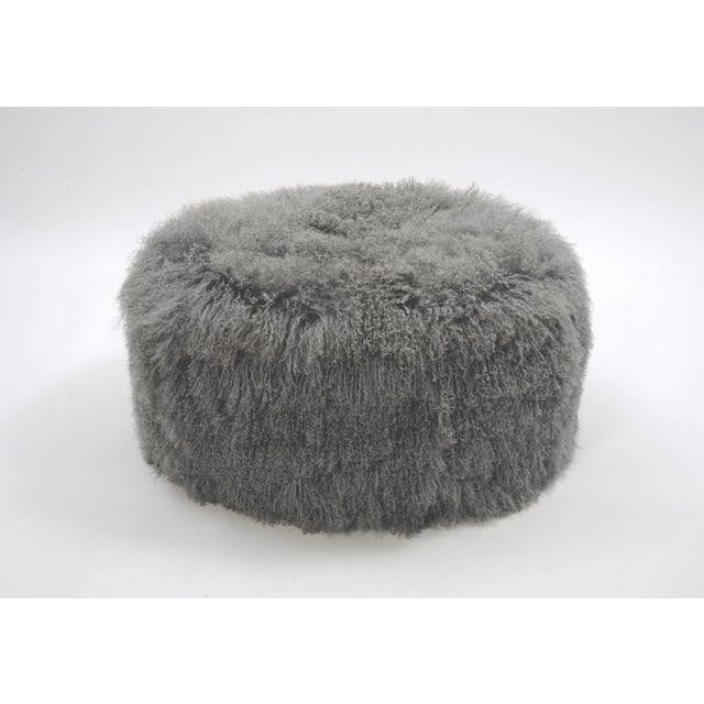 """Curly Boo 36""""Grey Made of Tibetan Lamb Please allow 4 weeks before the item ships."""