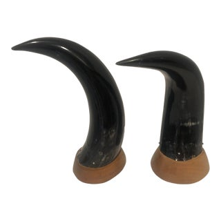 Mounted Natural Bull Horns - a Pair For Sale