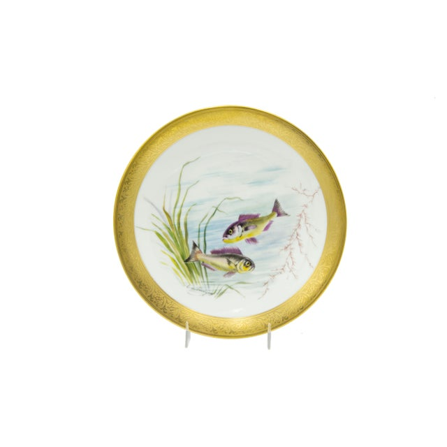 French Victorian Porcelain Dinner Plates - Set of 12 For Sale - Image 9 of 11