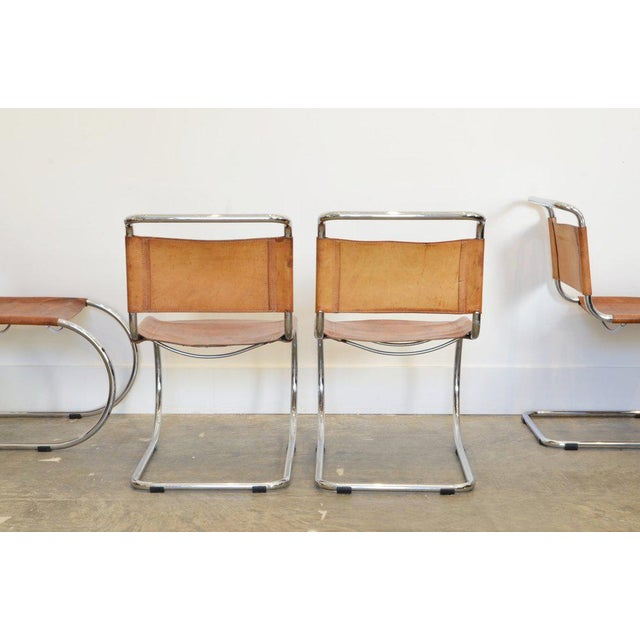 Thonet Set of Six Cantilever Chairs by Mies Van Der Rohe For Sale - Image 4 of 8