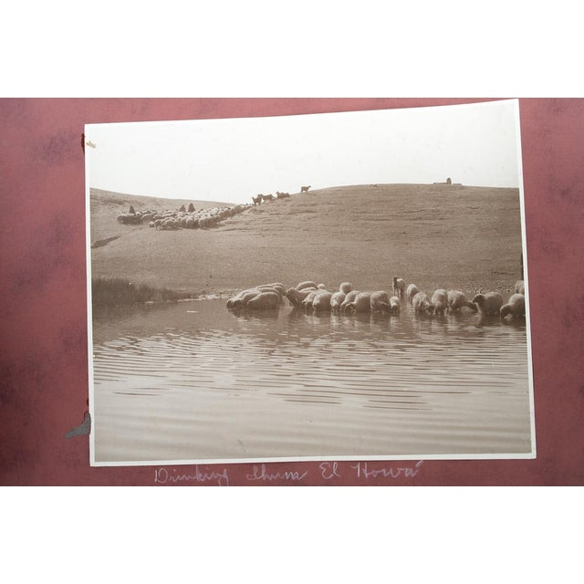 Arabia 1920s Holy Land Photo Album For Sale - Image 4 of 9
