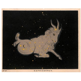 Astronomy, Constellation, Capricorn, Antique Matted Chromolithograph, 1845 For Sale