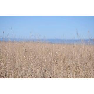 """Gaétan Caron """"Ten Mile Beach"""" Mendocino, California Landscape Photograph, 2013 For Sale"""