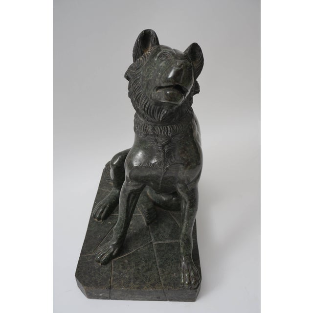 """Grand Tour 19th Century Italian Grand Tour """"Molossian Hound"""" Marble Sculpture For Sale - Image 3 of 12"""