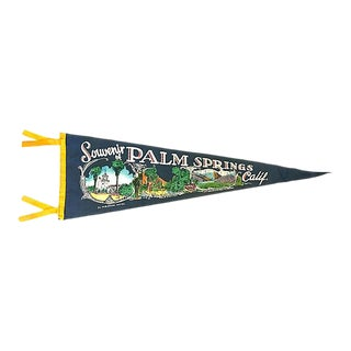 1950s Palm Springs Tourist Pennant For Sale