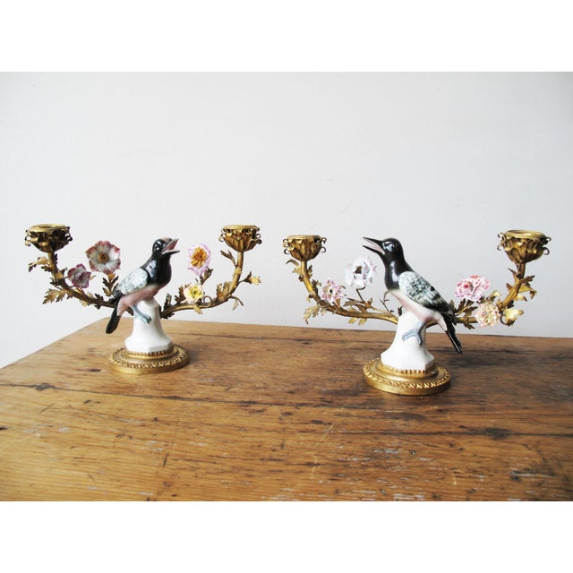 Louis XV Style Porcelain and Gilt-Bronze Candelabras - a Pair For Sale In New York - Image 6 of 6