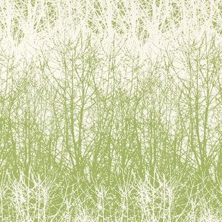 Schumacher Birches Wallpaper in Leaf White For Sale