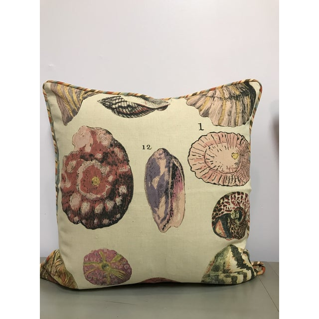 2010s Specimen Sea Shell Print Decorative Throw Pillows - a Pair For Sale - Image 5 of 9