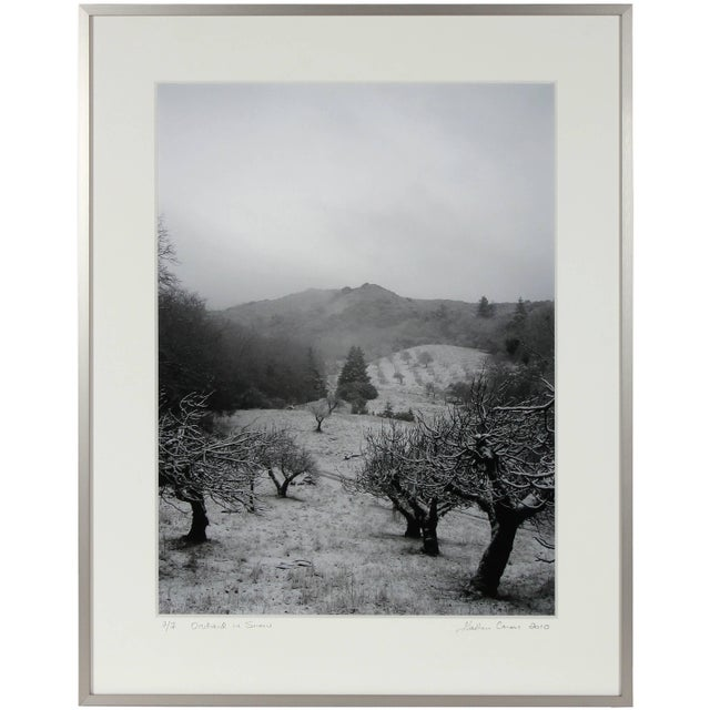 """Please allow at least 14 days for printing and framing before a piece is shipped. Entitled """"Orchard in Snow"""", this 2010..."""