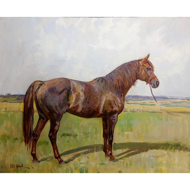 Rustic Peter Biegel -Matador , Portrait of a Horse -Oil Painting For Sale - Image 3 of 10