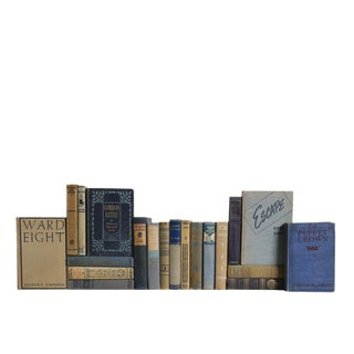 Vintage Denim & Flax - Twenty Decorative Books