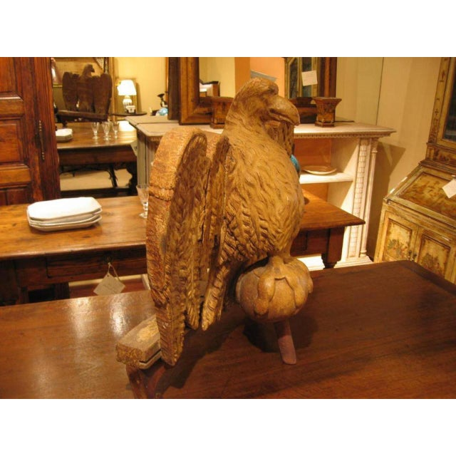 Early 18th Century 18th. Century Italian Carved Wood Eagle Sculpture For Sale - Image 5 of 8