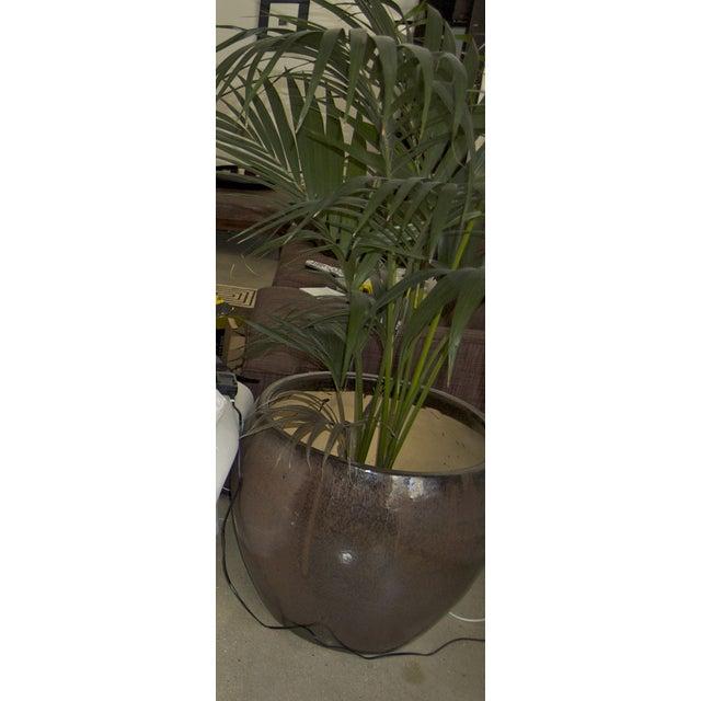 Large Glazed Ceramic Architectural Pot - Image 4 of 4