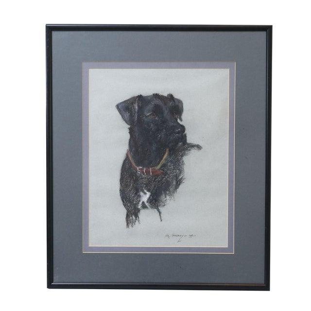 Labrador Retriever Original Pastel Drawing - Image 1 of 6