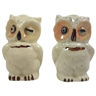 Vintage Ceramic Owl Salt & Pepper Shakers - A Pair For Sale