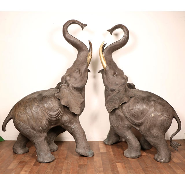 Wow! This breathtaking pair of elephants are from the 1980s/90s. They are made out of bronze. Very versatile pieces; you...