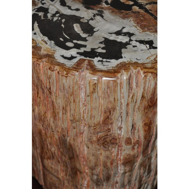 Ancient Petrified Wood Side Table For Sale - Image 4 of 7