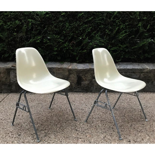 Pair of Early 1957 Dated Eames Parchment Side Fiberglass Shell Chairs Stacking Base Original MCM For Sale - Image 11 of 11