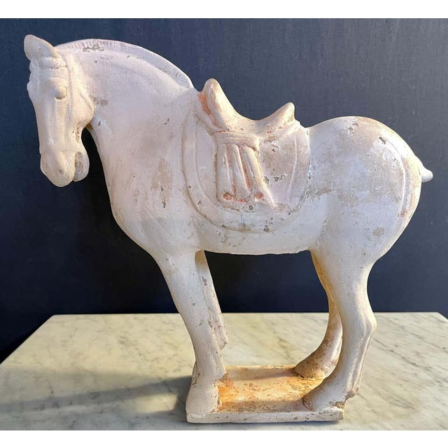 Orange Antique Tang Pottery Horses - a Pair For Sale - Image 8 of 13