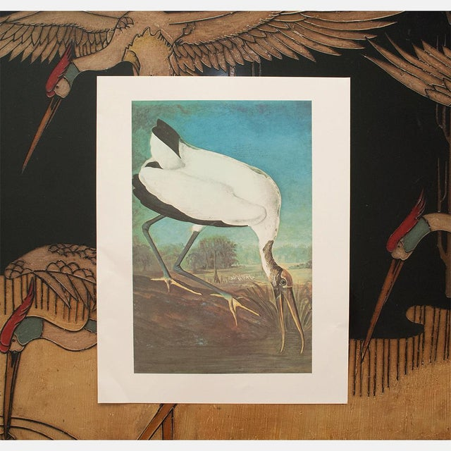 Printmaking Materials 1966 Vintage Cottage Print of Wood Ibis by John James Audubon For Sale - Image 7 of 10