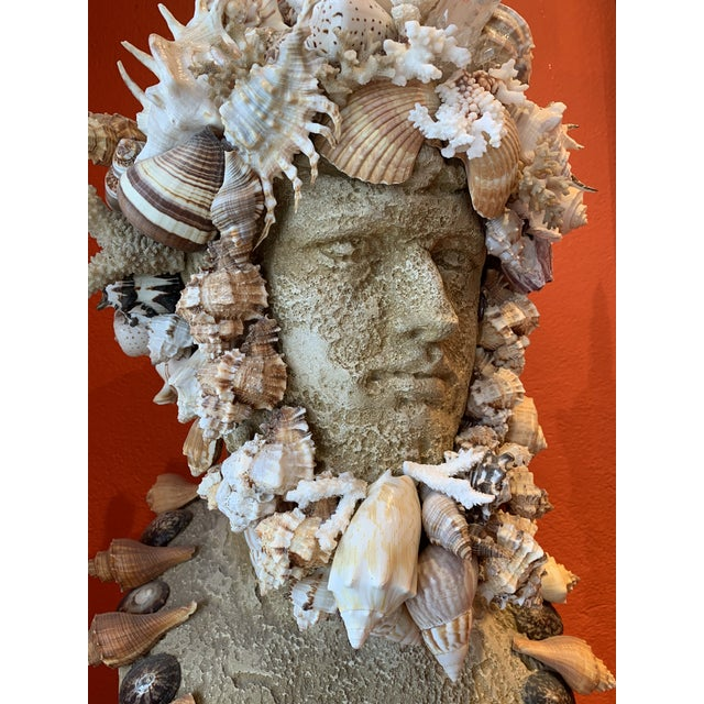 2020s Sea God Seashell Bust For Sale - Image 5 of 8