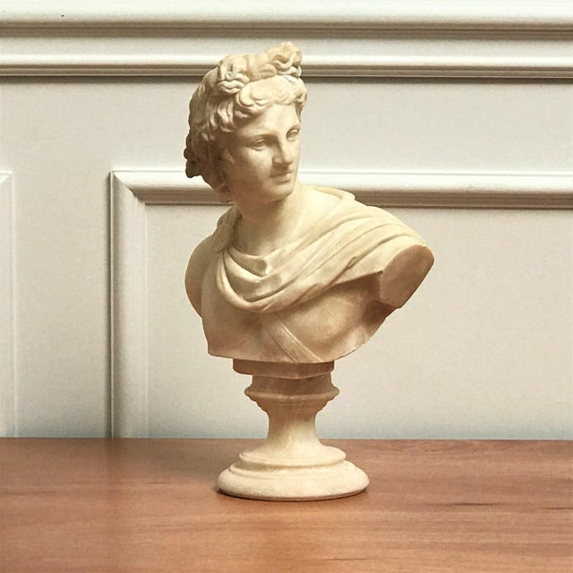19th Century Italian Grand Tour Souvenir Bust of the Apollo Belvedere For Sale - Image 13 of 13