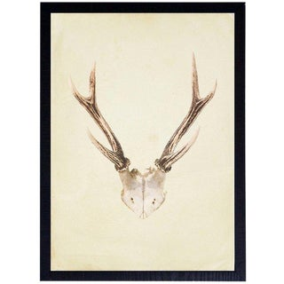 "Vertical Antlers - 17"" X 23"" For Sale"