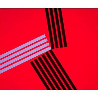 "Richard Caldicott ""Untitled (15), 2013"", Photograph For Sale"