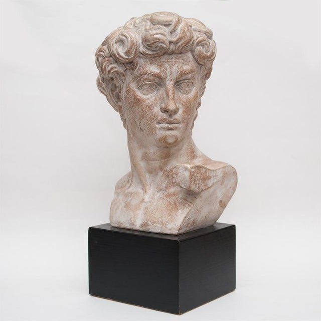 Large Midcentury ceramic bust of David on painted black ceramic base. Felt pad on the bottom of the base for protection of...