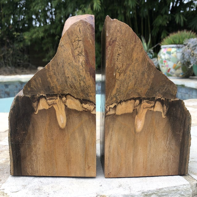 Wood Prehistoric Polished and Natural Petrified Wood Bookends - a Pair For Sale - Image 7 of 13