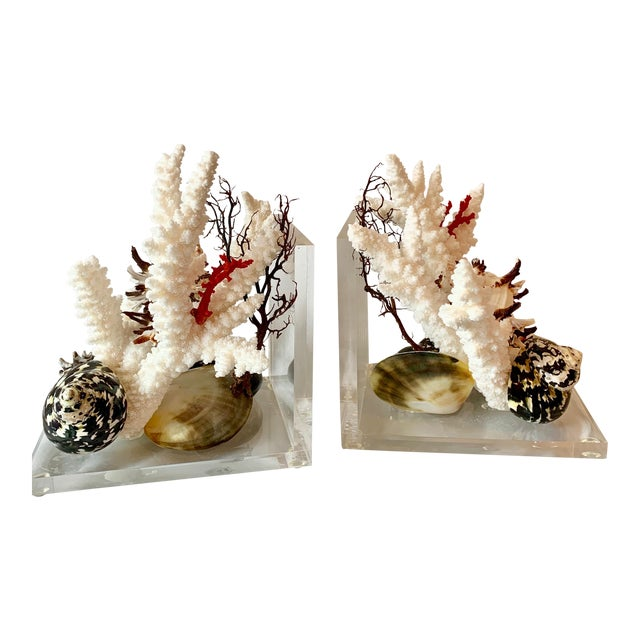 Lucite and Shell Bookends - a Pair For Sale