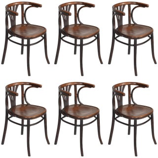 Set of Six Turn of the Century Thonet Bentwood Chairs For Sale